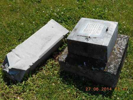 FOGLEMAN, WALTER - St. Joseph County, Michigan   WALTER FOGLEMAN - Michigan Gravestone Photos