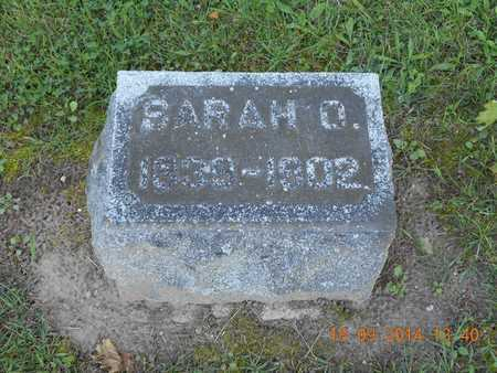 SHELDON, SARAH O. - St. Joseph County, Michigan   SARAH O. SHELDON - Michigan Gravestone Photos