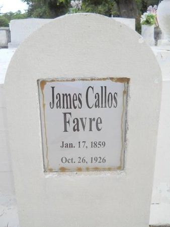 FAVRE, JAMES CALLOS - Hancock County, Mississippi | JAMES CALLOS FAVRE - Mississippi Gravestone Photos