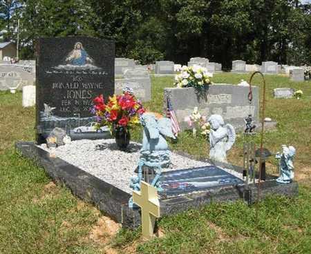 "JONES, RONALD WAYNE ""RON"" - Jefferson Davis County, Mississippi | RONALD WAYNE ""RON"" JONES - Mississippi Gravestone Photos"