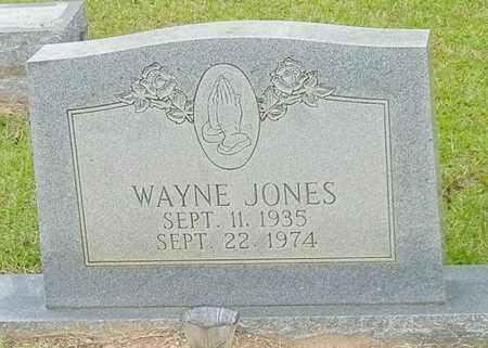JONES, WAYNE - Jefferson Davis County, Mississippi | WAYNE JONES - Mississippi Gravestone Photos