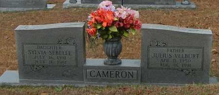CAMERON, JULIUS VELBURT - Marion County, Mississippi | JULIUS VELBURT CAMERON - Mississippi Gravestone Photos