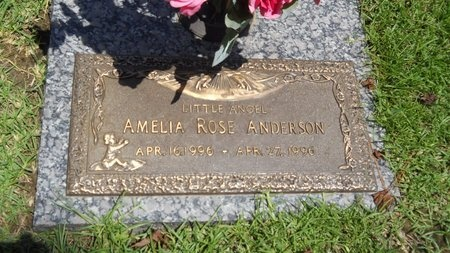 ANDERSON, AMELIA ROSE - Warren County, Mississippi | AMELIA ROSE ANDERSON - Mississippi Gravestone Photos