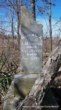 CUSTER BROWN, ABIGAL ANN - Adair County, Missouri   ABIGAL ANN CUSTER BROWN - Missouri Gravestone Photos