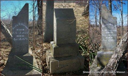 BROWN, ABIGAL ANN (OVERVIEW) - Adair County, Missouri | ABIGAL ANN (OVERVIEW) BROWN - Missouri Gravestone Photos