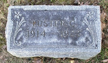TRIPLETT, LUSTER CLEO - Adair County, Missouri | LUSTER CLEO TRIPLETT - Missouri Gravestone Photos