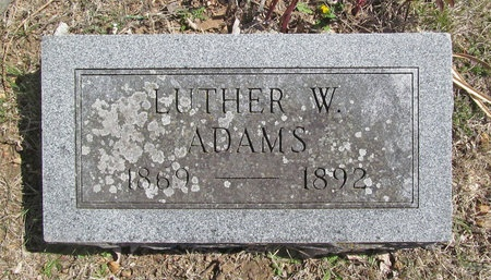 ADAMS, LUTHER W - Barry County, Missouri | LUTHER W ADAMS - Missouri Gravestone Photos