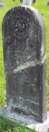 BOWMAN, DANIEL, JR - Barry County, Missouri | DANIEL, JR BOWMAN - Missouri Gravestone Photos