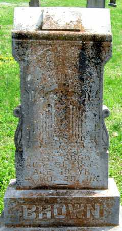 BROWN, W B - Barry County, Missouri | W B BROWN - Missouri Gravestone Photos