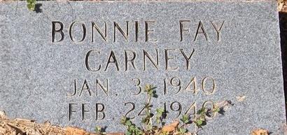 CARNEY, BONNIE FAY - Barry County, Missouri | BONNIE FAY CARNEY - Missouri Gravestone Photos