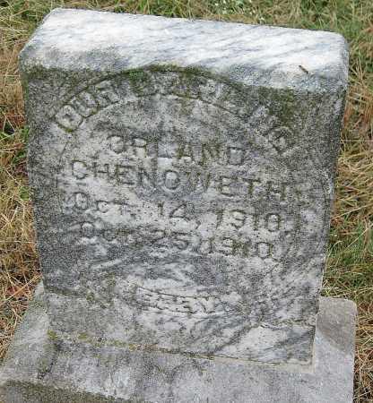 CHENOWETH, ORLAND - Barry County, Missouri | ORLAND CHENOWETH - Missouri Gravestone Photos