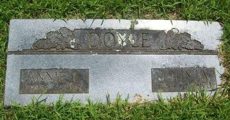 DOYLE, ANNIE L. - Barry County, Missouri | ANNIE L. DOYLE - Missouri Gravestone Photos