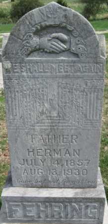 FEHRING, HERMAN - Barry County, Missouri   HERMAN FEHRING - Missouri Gravestone Photos