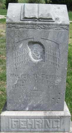 FEHRING, WALTER R - Barry County, Missouri   WALTER R FEHRING - Missouri Gravestone Photos