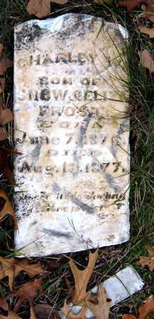 FROST, CHARLEY W - Barry County, Missouri | CHARLEY W FROST - Missouri Gravestone Photos