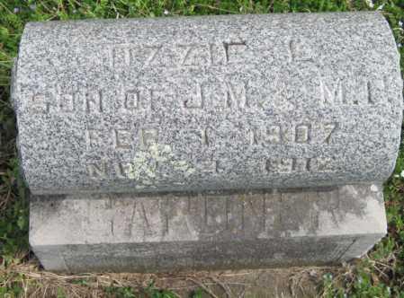 GARDNER, OZZIE L - Barry County, Missouri | OZZIE L GARDNER - Missouri Gravestone Photos