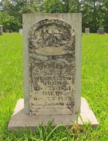 GIBSON, CHARLES R - Barry County, Missouri | CHARLES R GIBSON - Missouri Gravestone Photos