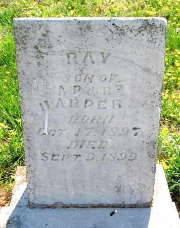 HARPER, RAY - Barry County, Missouri | RAY HARPER - Missouri Gravestone Photos