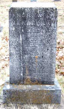 HENDERSON, ANDREW - Barry County, Missouri | ANDREW HENDERSON - Missouri Gravestone Photos
