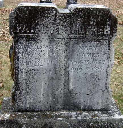 IRVIN JAMES, NANCY - Barry County, Missouri | NANCY IRVIN JAMES - Missouri Gravestone Photos