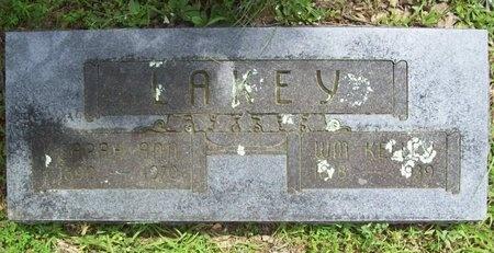 LAKEY, SARAH ANN - Barry County, Missouri | SARAH ANN LAKEY - Missouri Gravestone Photos