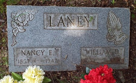 LANEY, NANCY ELLEN - Barry County, Missouri | NANCY ELLEN LANEY - Missouri Gravestone Photos
