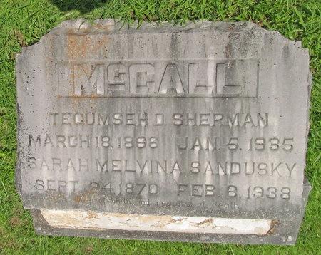 MCCALL, SARAH MELVINA - Barry County, Missouri | SARAH MELVINA MCCALL - Missouri Gravestone Photos