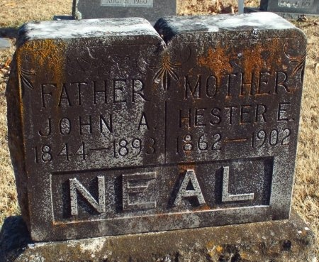 NEAL, HESTER E - Barry County, Missouri | HESTER E NEAL - Missouri Gravestone Photos
