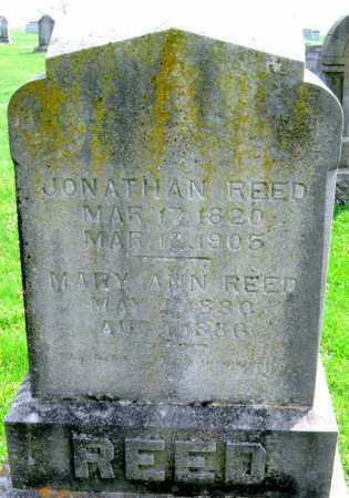 REED, MARY ANN - Barry County, Missouri | MARY ANN REED - Missouri Gravestone Photos