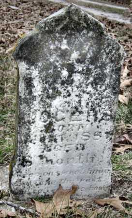 ROGERS, MARY J - Barry County, Missouri | MARY J ROGERS - Missouri Gravestone Photos