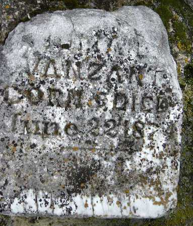 VANZANDT, JULIA - Barry County, Missouri | JULIA VANZANDT - Missouri Gravestone Photos