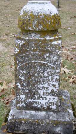 VARNER, AMERICA WELLS - Barry County, Missouri   AMERICA WELLS VARNER - Missouri Gravestone Photos