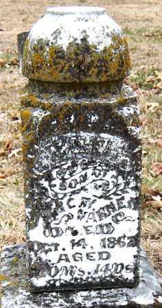 VARNER, WILLIAM ORSON - Barry County, Missouri   WILLIAM ORSON VARNER - Missouri Gravestone Photos