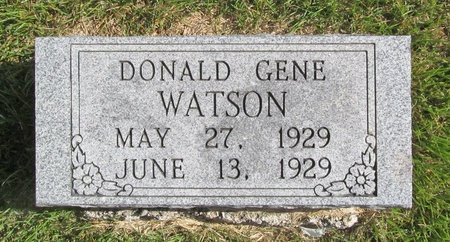 WATSON, DONALD GENE - Barry County, Missouri | DONALD GENE WATSON - Missouri Gravestone Photos