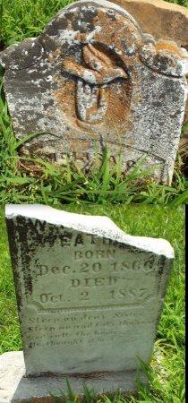 WEATHERLY, MOLISA C. - Barry County, Missouri | MOLISA C. WEATHERLY - Missouri Gravestone Photos