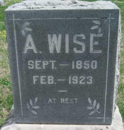 WISE, ANDREW - Barry County, Missouri | ANDREW WISE - Missouri Gravestone Photos
