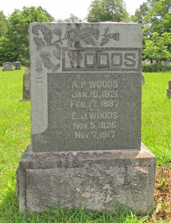 WOODS, ANDREW PINCKNEY - Barry County, Missouri | ANDREW PINCKNEY WOODS - Missouri Gravestone Photos