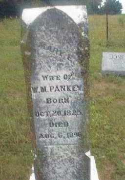 YOUNGER PANKEY, MARY ELIZABETH - Cedar County, Missouri | MARY ELIZABETH YOUNGER PANKEY - Missouri Gravestone Photos