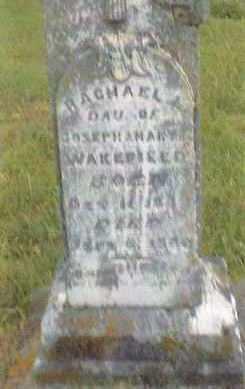 WAKEFIELD, RACHAEL L. - Cedar County, Missouri | RACHAEL L. WAKEFIELD - Missouri Gravestone Photos