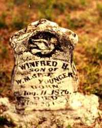 YOUNGER, WINIFRED H. - Cedar County, Missouri | WINIFRED H. YOUNGER - Missouri Gravestone Photos