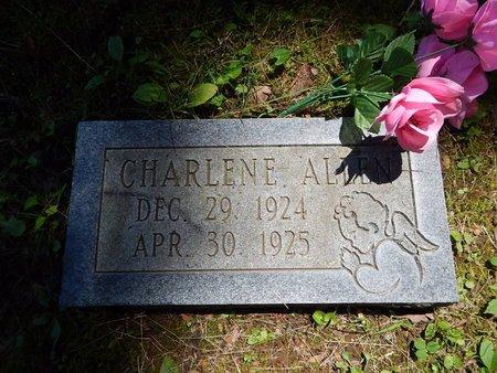 ALLEN, CHARLENE - Christian County, Missouri | CHARLENE ALLEN - Missouri Gravestone Photos