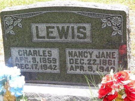 LEWIS, NANCY JANE - Christian County, Missouri | NANCY JANE LEWIS - Missouri Gravestone Photos