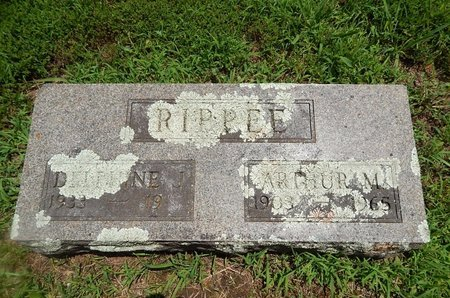 HORNSEY RIPPEE, DELPHINE JUNE - Christian County, Missouri | DELPHINE JUNE HORNSEY RIPPEE - Missouri Gravestone Photos