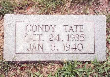 TATE, CONDY - Dent County, Missouri | CONDY TATE - Missouri Gravestone Photos