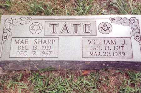 TATE, WILLIAM JAMES - Dent County, Missouri | WILLIAM JAMES TATE - Missouri Gravestone Photos
