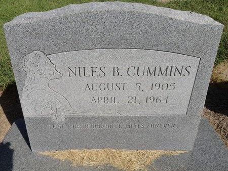 CUMMINS, NILES BOYD - Dunklin County, Missouri | NILES BOYD CUMMINS - Missouri Gravestone Photos