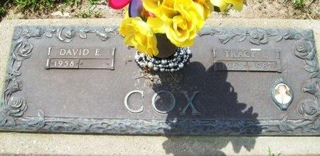 COX, TRACY L. - Franklin County, Missouri   TRACY L. COX - Missouri Gravestone Photos