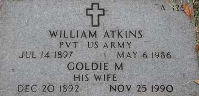 ATKINS, WILLIAM - Greene County, Missouri | WILLIAM ATKINS - Missouri Gravestone Photos