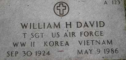 DAVID, WILLIAM H - Greene County, Missouri | WILLIAM H DAVID - Missouri Gravestone Photos