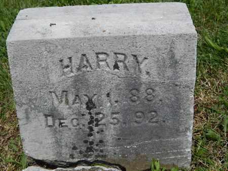 WHITE, HARRY - Greene County, Missouri   HARRY WHITE - Missouri Gravestone Photos